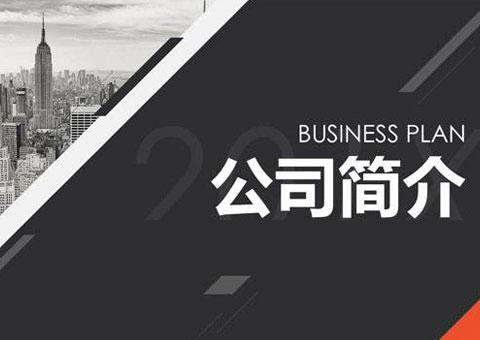 上海隆旅电子科技有限公司公司简介